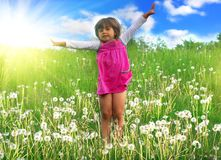 Fun on meadow Royalty Free Stock Images