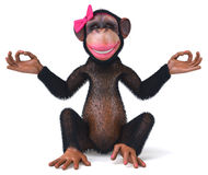Fun monkey Royalty Free Stock Image