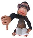 Fun monkey Stock Image