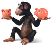 Fun monkey Stock Images