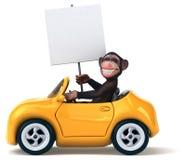 Fun monkey Royalty Free Stock Images
