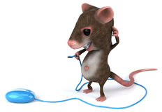 Fun mouse Stock Images