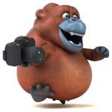 Fun orangoutan - 3D Illustration Stock Photos