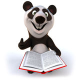 Fun panda Stock Image