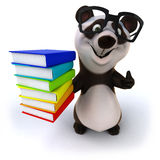Fun panda Stock Photos