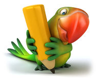 Fun parrot Stock Image