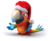 Fun parrot Royalty Free Stock Photo