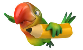 Fun parrot Stock Photo