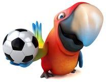 Fun parrot royalty free illustration