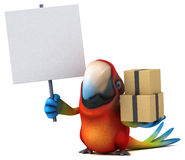 Fun parrot Stock Photo