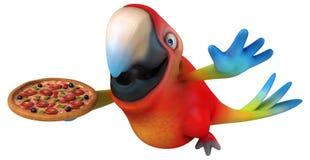 Fun parrot Stock Photos