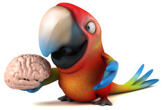 Fun parrot Royalty Free Stock Photo