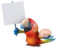 Fun parrot Stock Image