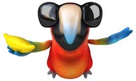 Fun parrot Stock Photography