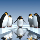 Fun penguins Stock Photo