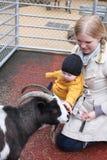 Fun At the Petting Zoo Stock Image