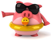 Fun pig Royalty Free Stock Photo