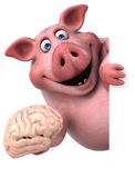 Fun pig - 3D Illustration Stock Images