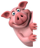 Fun pig - 3D Illustration Royalty Free Stock Photography