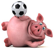 Fun pig - 3D Illustration Royalty Free Stock Image