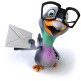 Fun pigeon Royalty Free Stock Photo