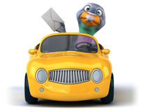 Fun pigeon Stock Images