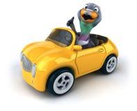 Fun pigeon Royalty Free Stock Image