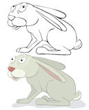 Fun rabbit Stock Photography