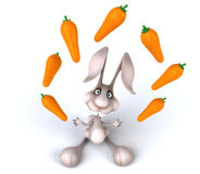Fun rabbit Royalty Free Stock Images