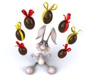 Fun rabbit Stock Photos