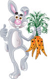 Fun rabbit with carrot Stock Images