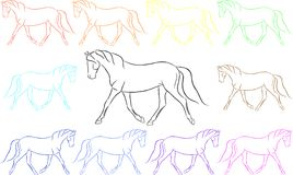 Fun Rainbow Horses Stock Photos