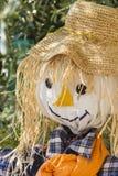 Fun scarecrow Royalty Free Stock Images