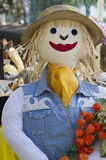 Fun scarecrow Stock Photo