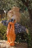 Fun scarecrow Royalty Free Stock Photos