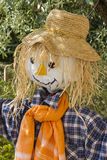Fun scarecrow Royalty Free Stock Images