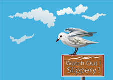 Fun with seagull-vector illustration Royalty Free Stock Images