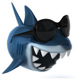 Fun shark Stock Photography