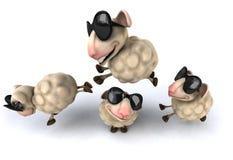 Fun sheep Stock Images