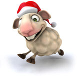 Fun sheep Royalty Free Stock Photography
