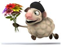 Fun sheep Royalty Free Stock Photo