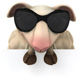 Fun sheep Royalty Free Stock Photography
