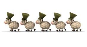 Fun sheeps Stock Photos