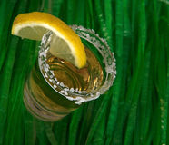 Fun shot of Tequila. Shot of Tequila on a grass skirt Royalty Free Stock Photography