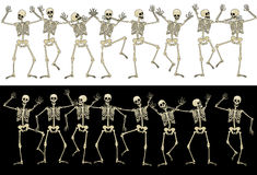 Fun skeletons Stock Photos