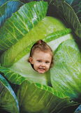 Fun smiling child girl looking from Royalty Free Stock Photography