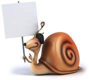 Fun snail Stock Images