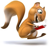 Fun squirrel Stock Images