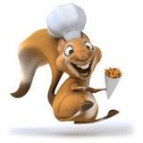 Fun squirrel Stock Image