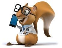 Fun squirrel Stock Images